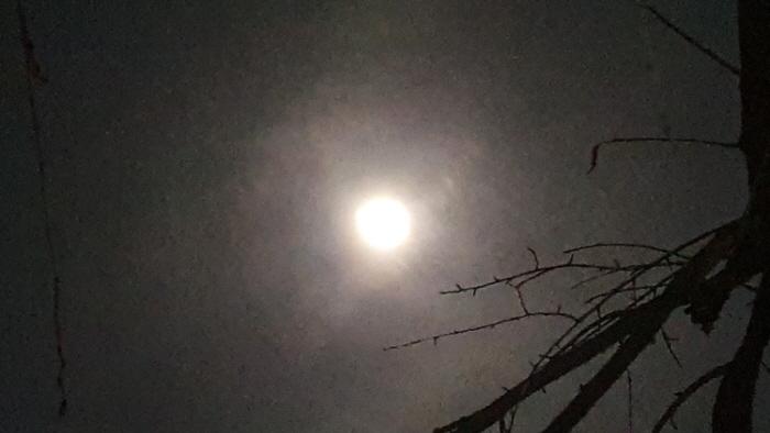보름달2.jpg