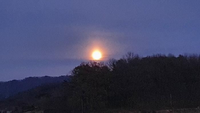 보름달1.jpg
